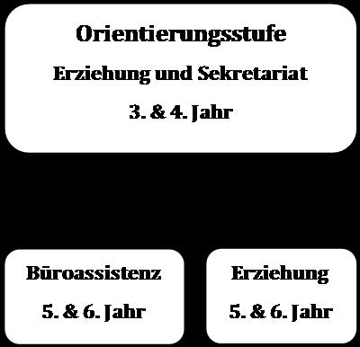 mg-tb-SCHEMA